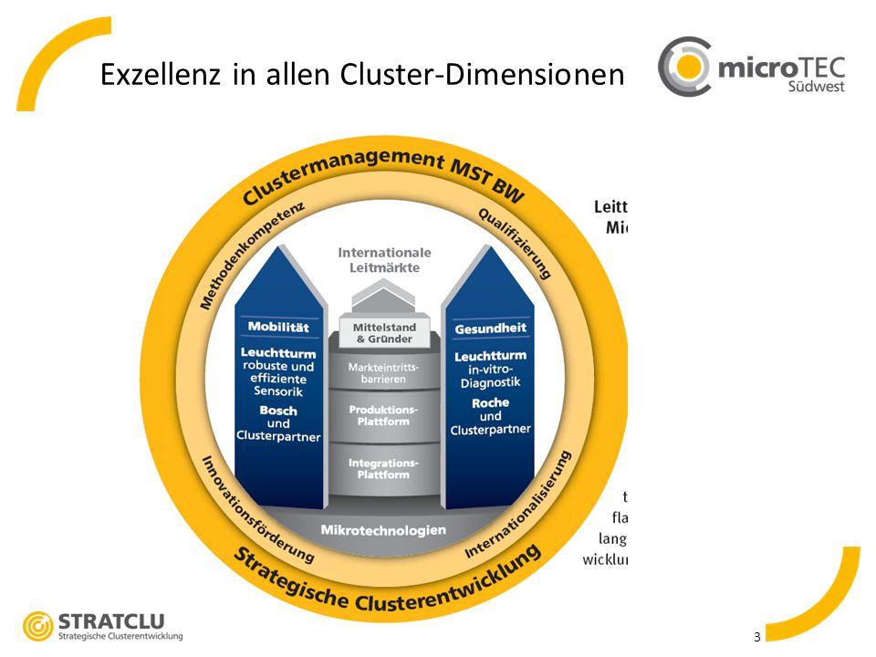 Exzellenz in allen Cluster-Dimensionen