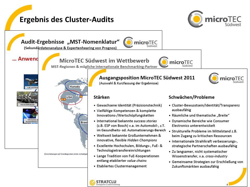 Ergebnis des Cluster-Audits