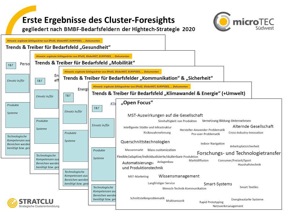 Erste Ergebnisse des Cluster-Foresights gegliedert nach BMBF-Bedarfsfeldern der Hightech-Strategie 2020
