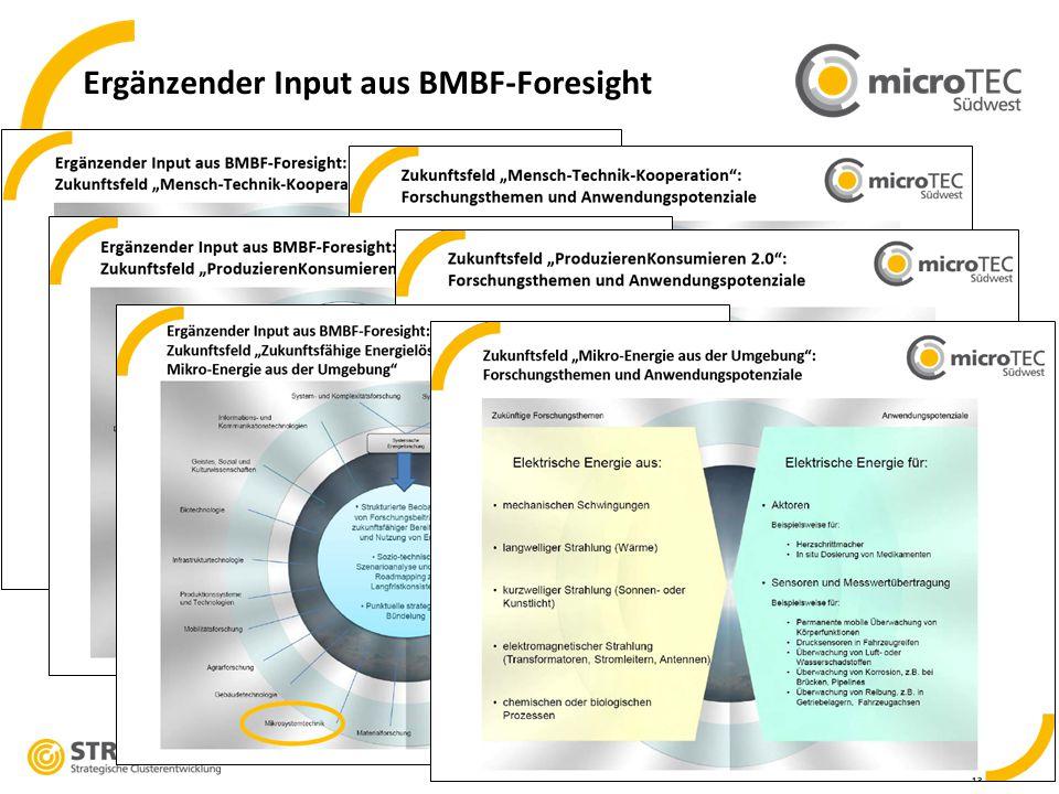 Ergänzender Input aus BMBF-Foresight