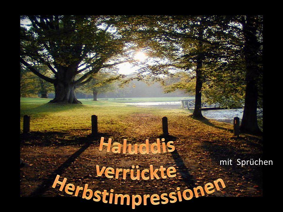 Haluddis verrückte Herbstimpressionen