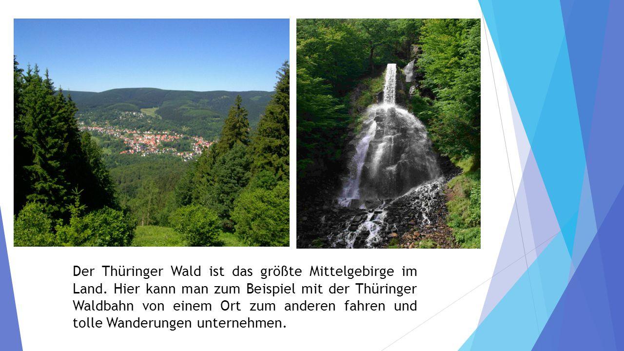 Der Thüringer Wald ist das größte Mittelgebirge im Land