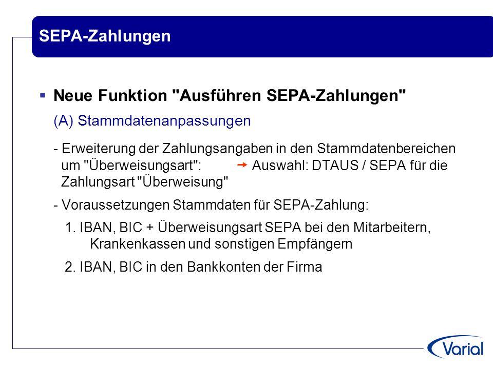 Neue Funktion Ausführen SEPA-Zahlungen (A) Stammdatenanpassungen