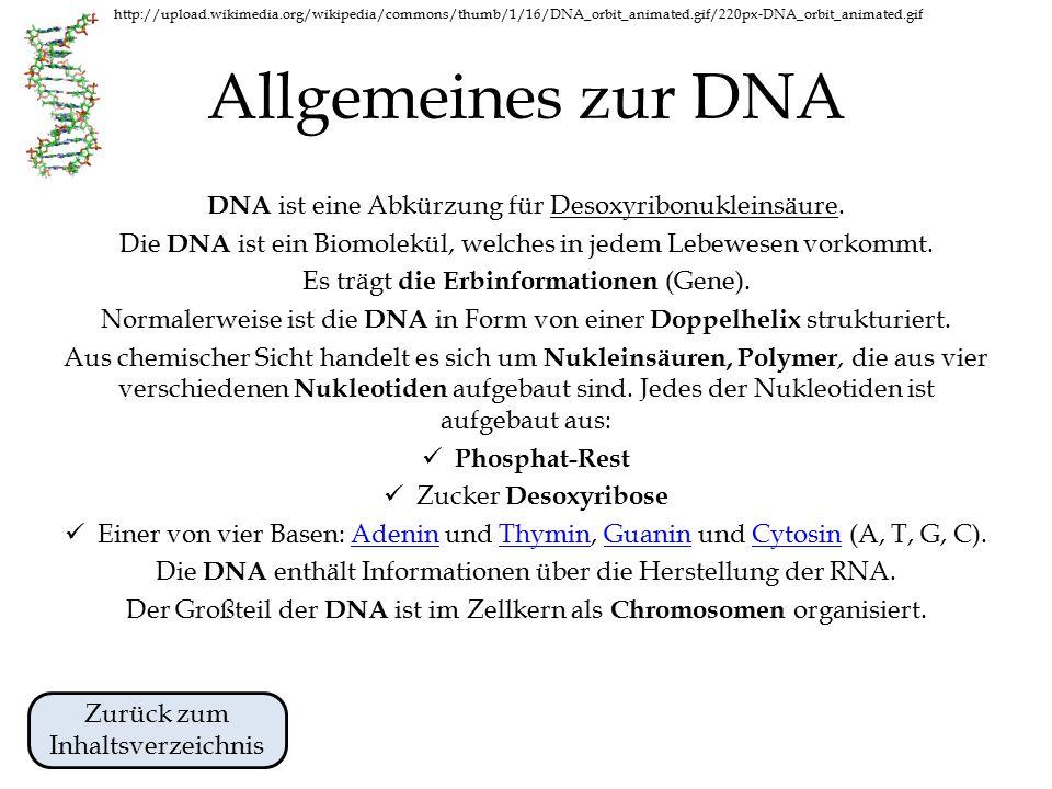 Allgemeines zur DNA DNA ist eine Abkürzung für Desoxyribonukleinsäure.