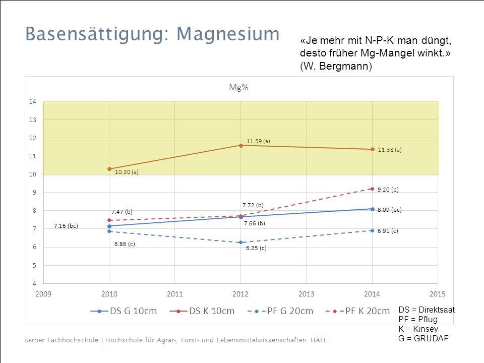 Basensättigung: Magnesium