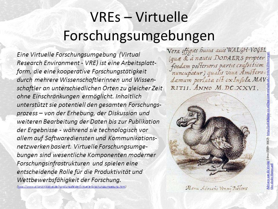 VREs – Virtuelle Forschungsumgebungen