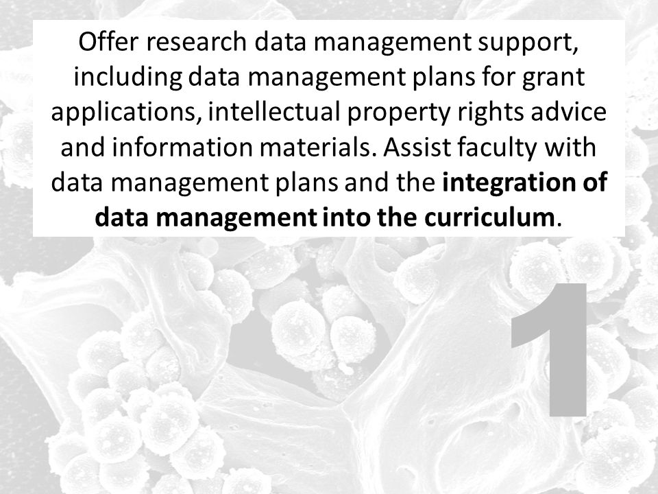 Offer research data management support, including data management plans for grant applications, intellectual property rights advice and information materials. Assist faculty with data management plans and the integration of data management into the curriculum.