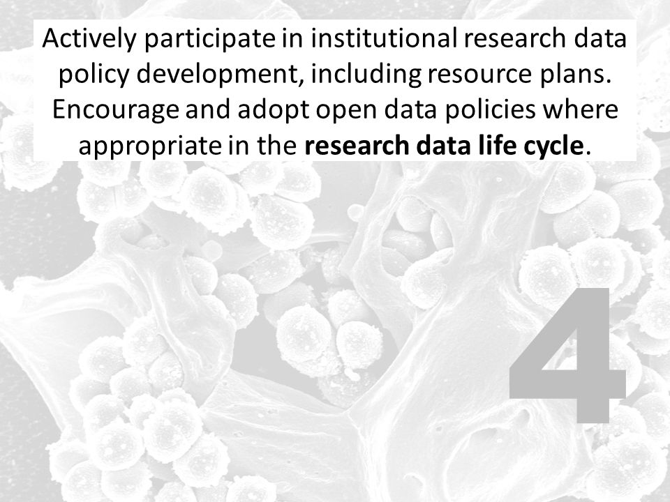 Actively participate in institutional research data policy development, including resource plans. Encourage and adopt open data policies where appropriate in the research data life cycle.
