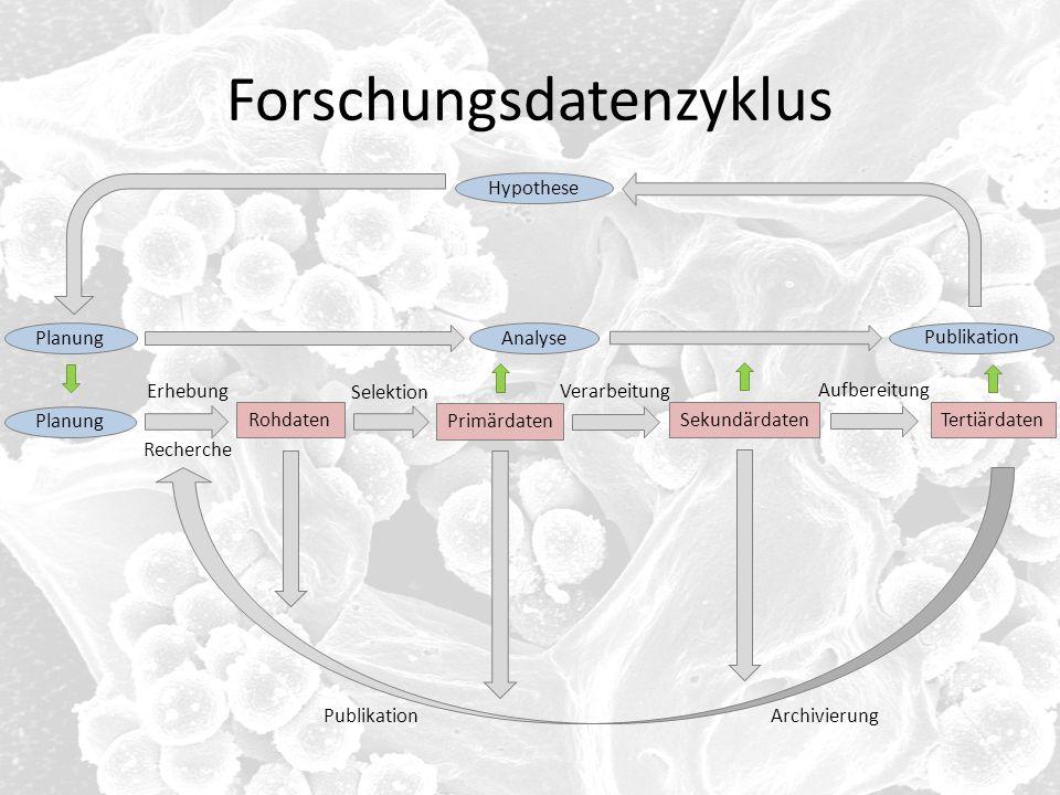 Forschungsdatenzyklus