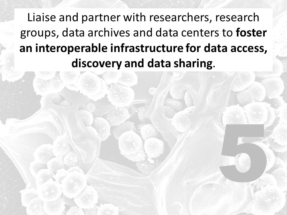 Liaise and partner with researchers, research groups, data archives and data centers to foster an interoperable infrastructure for data access, discovery and data sharing.