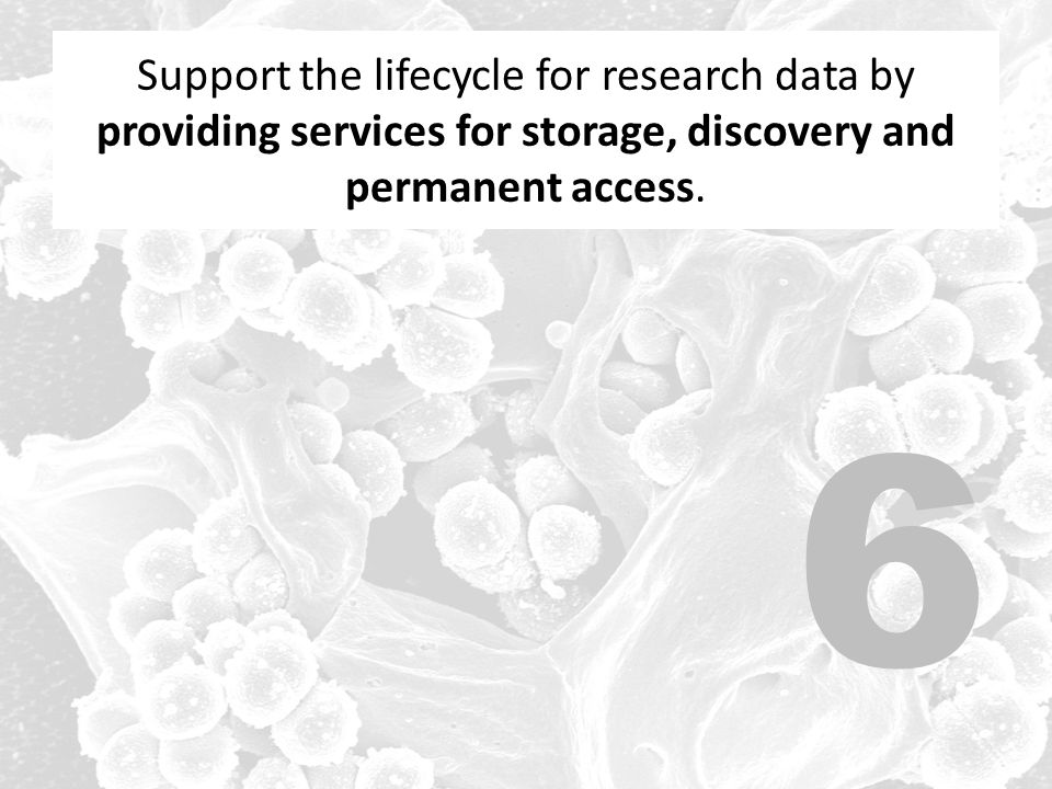 Support the lifecycle for research data by providing services for storage, discovery and permanent access.