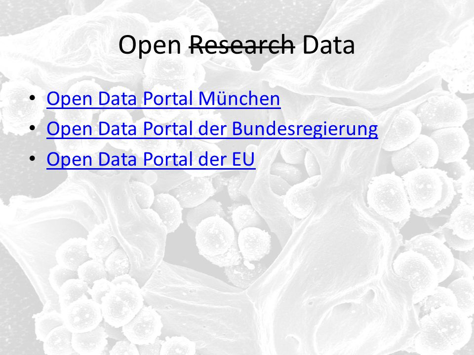 Open Research Data Open Data Portal München