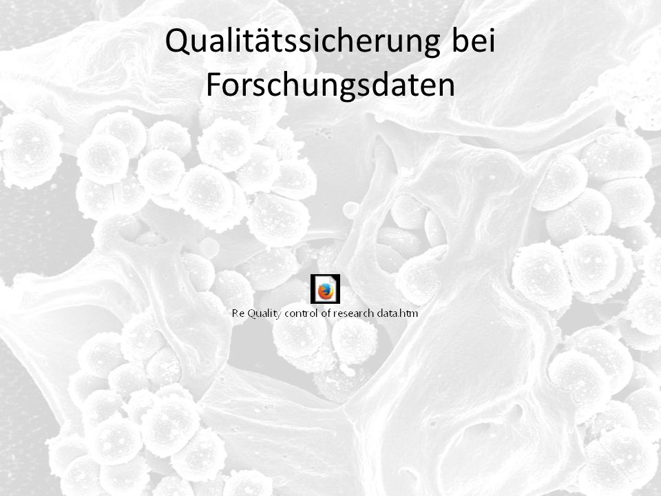 Qualitätssicherung bei Forschungsdaten
