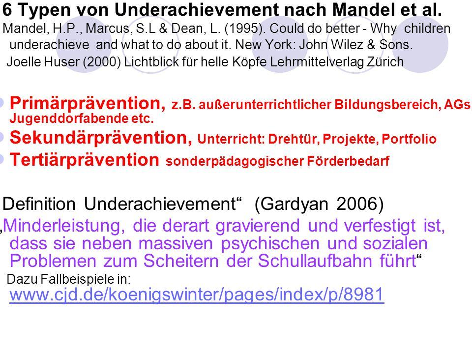 6 Typen von Underachievement nach Mandel et al.