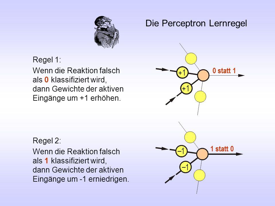 Die Perceptron Lernregel