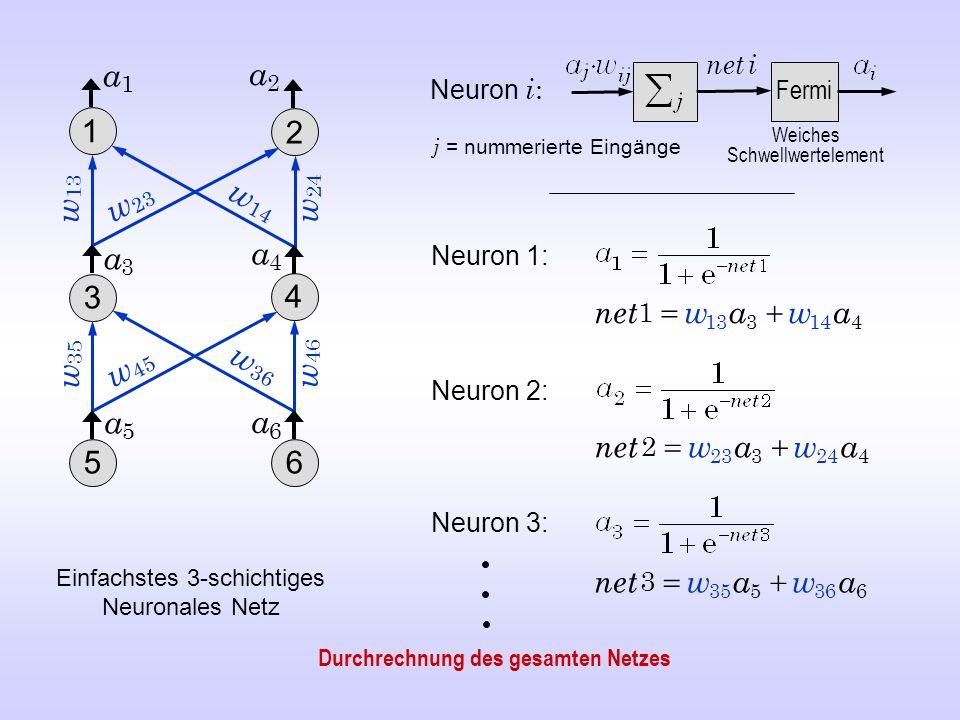net i a1. a2. Neuron i: Fermi. 1. 2. Weiches Schwellwertelement. j = nummerierte Eingänge. w13.