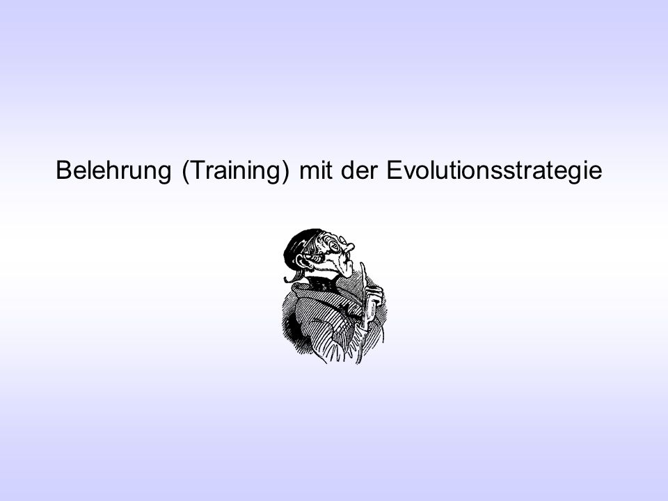 Belehrung (Training) mit der Evolutionsstrategie