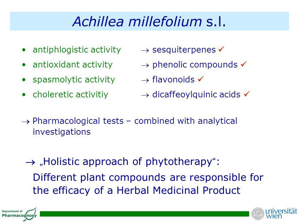Achillea millefolium s.l.
