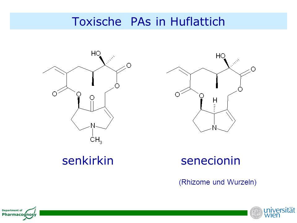 Toxische PAs in Huflattich
