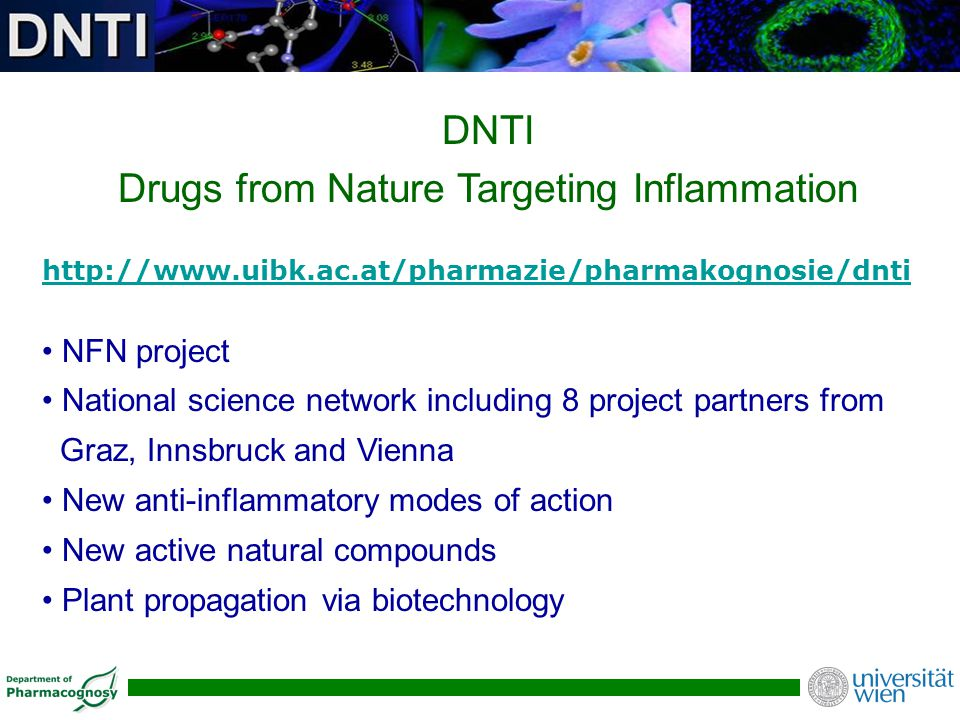 Drugs from Nature Targeting Inflammation