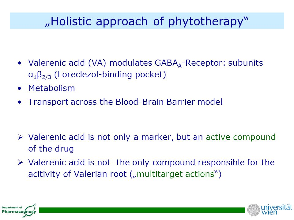 """Holistic approach of phytotherapy"