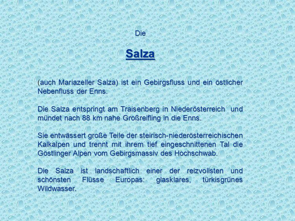 Die Salza. (auch Mariazeller Salza) ist ein Gebirgsfluss und ein östlicher Nebenfluss der Enns.