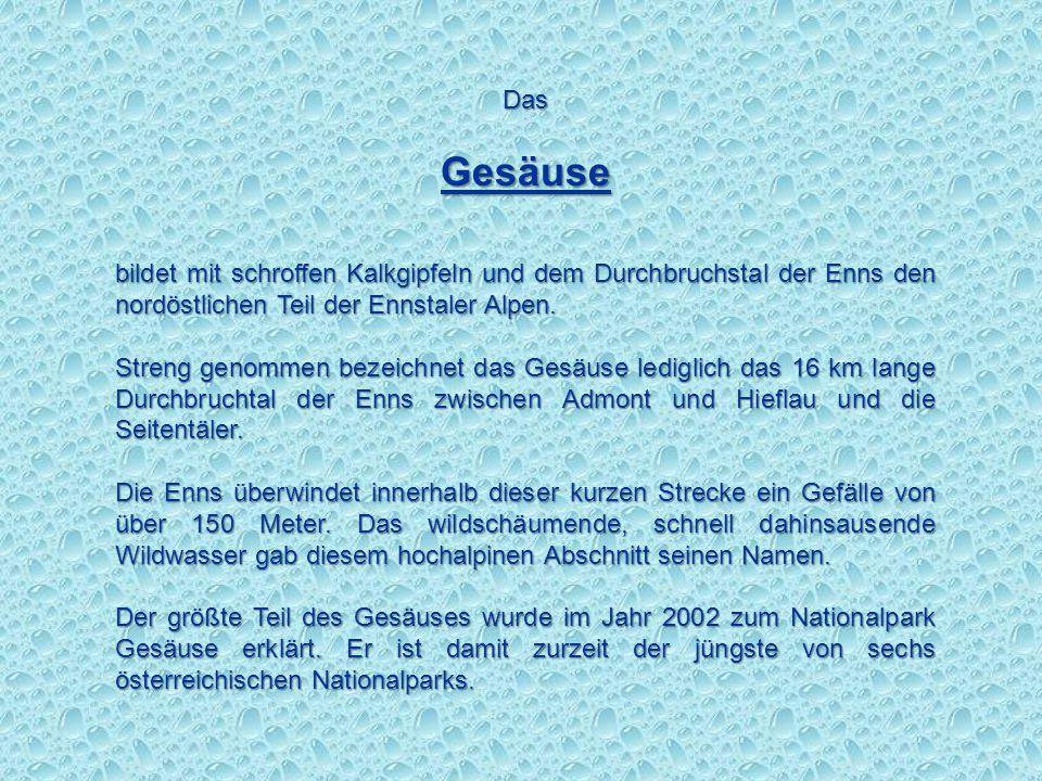 Das Gesäuse. bildet mit schroffen Kalkgipfeln und dem Durchbruchstal der Enns den nordöstlichen Teil der Ennstaler Alpen.