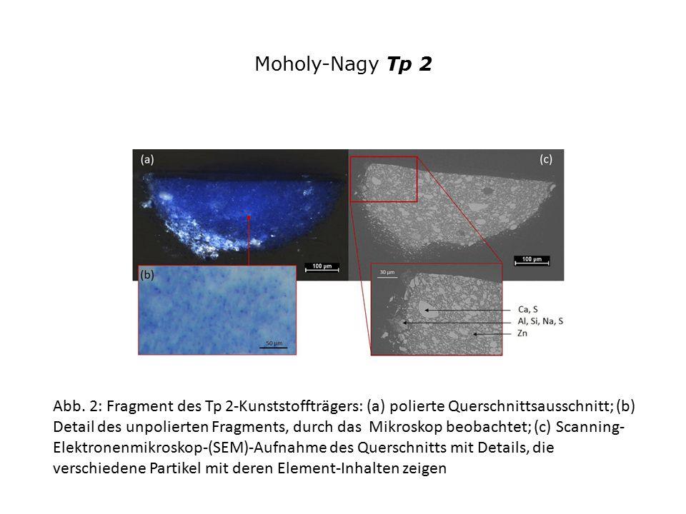 Moholy-Nagy Tp 2
