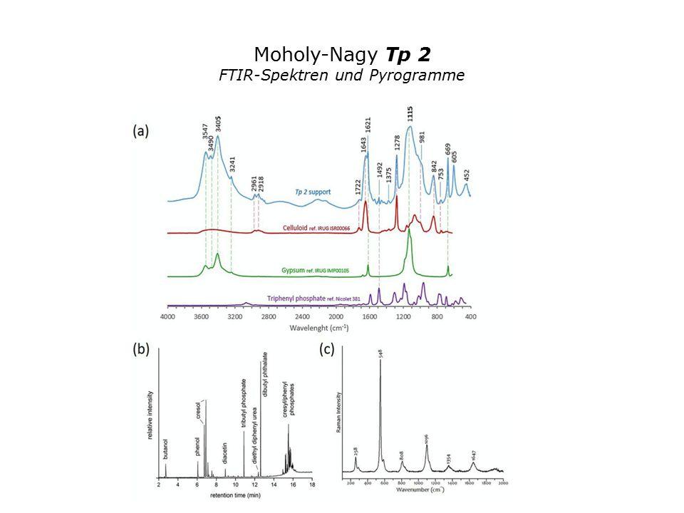 Moholy-Nagy Tp 2 FTIR-Spektren und Pyrogramme
