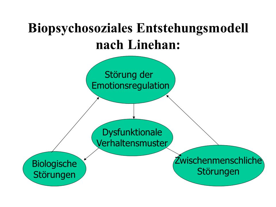 Biopsychosoziales Entstehungsmodell nach Linehan: