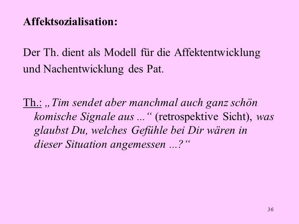 Affektsozialisation: