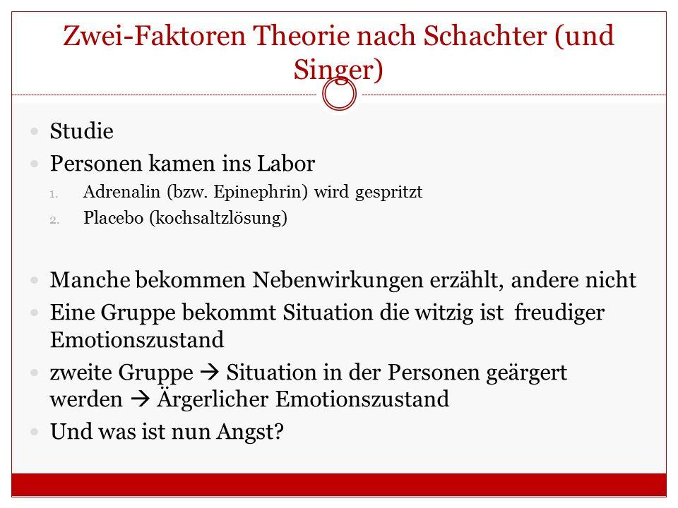 Zwei-Faktoren Theorie nach Schachter (und Singer)