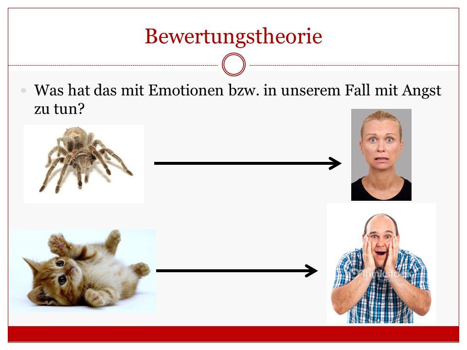 Bewertungstheorie Was hat das mit Emotionen bzw. in unserem Fall mit Angst zu tun