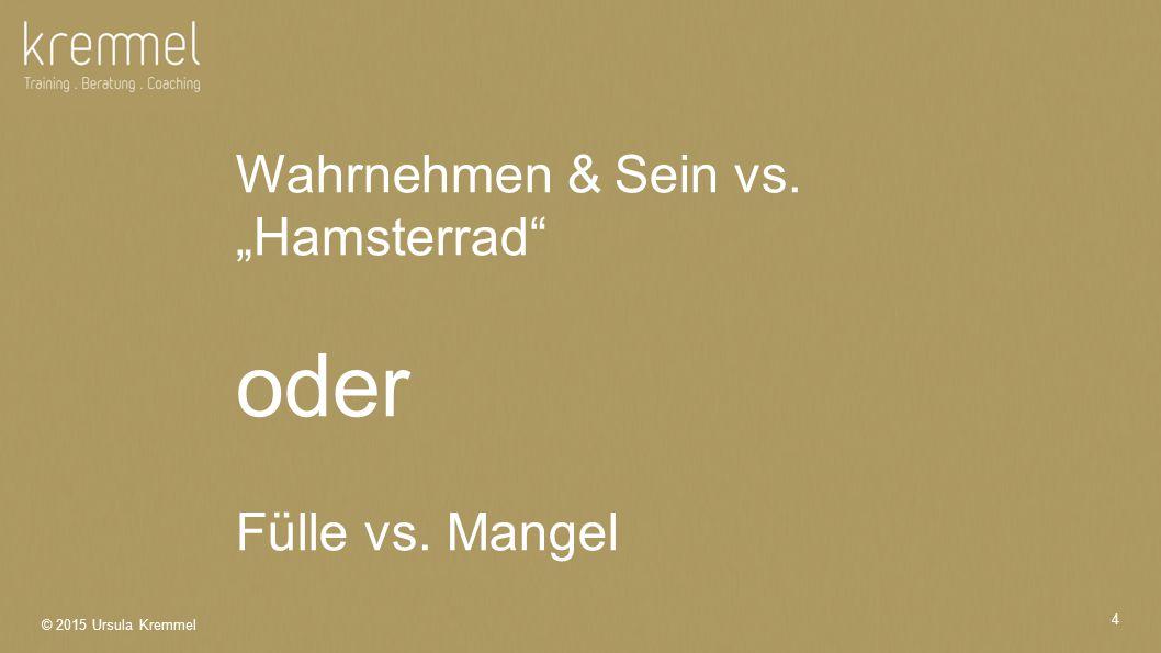 "Wahrnehmen & Sein vs. ""Hamsterrad"