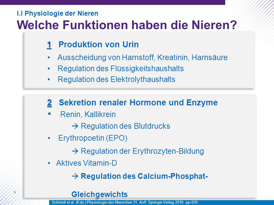 2 Sekretion renaler Hormone und Enzyme Renin, Kallikrein