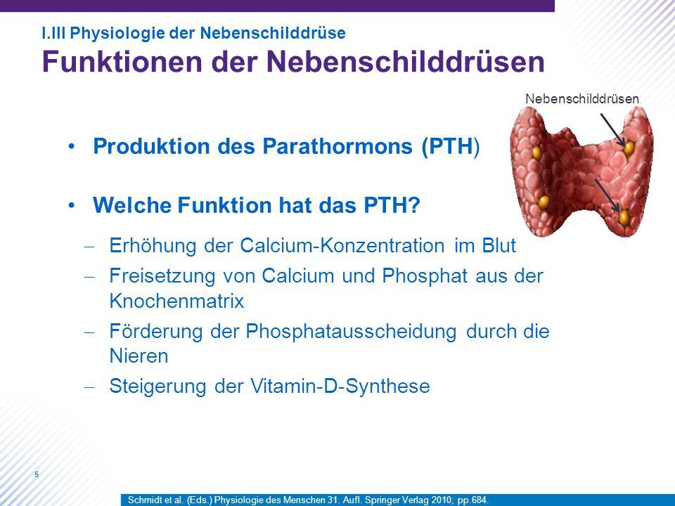 Produktion des Parathormons (PTH) Welche Funktion hat das PTH
