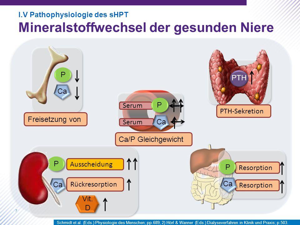 Mineralstoffwechsel der gesunden Niere
