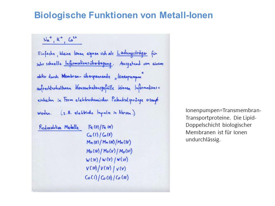 Biologische Funktionen von Metall-Ionen