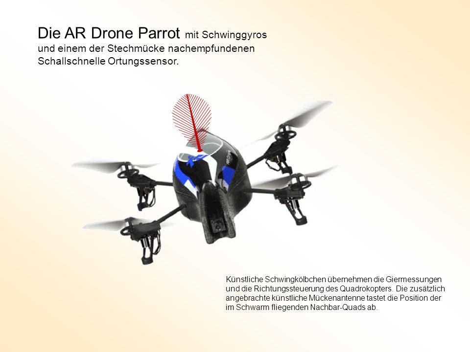 Die AR Drone Parrot mit Schwinggyros und einem der Stechmücke nachempfundenen Schallschnelle Ortungssensor.
