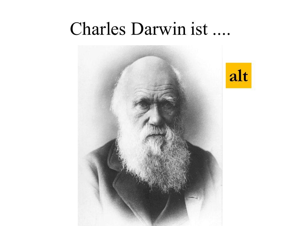 Charles Darwin ist .... alt