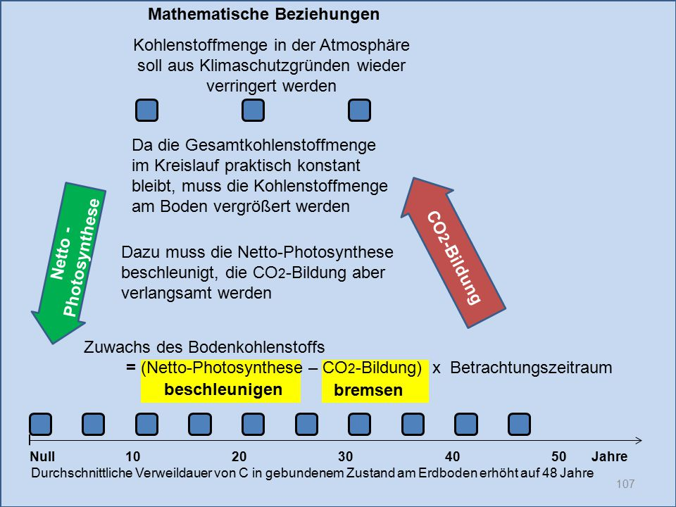 CO2-Bildung Netto -Photosynthese