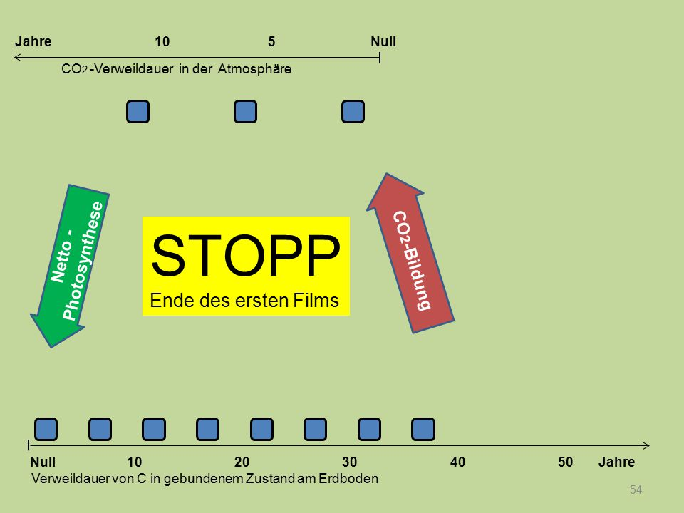 STOPP Ende des ersten Films CO2-Bildung Netto -Photosynthese Jahre 10