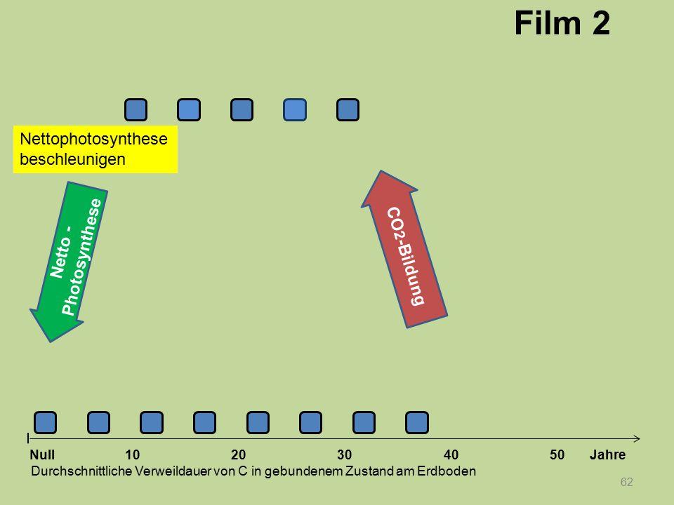 Film 2 Nettophotosynthese beschleunigen CO2-Bildung