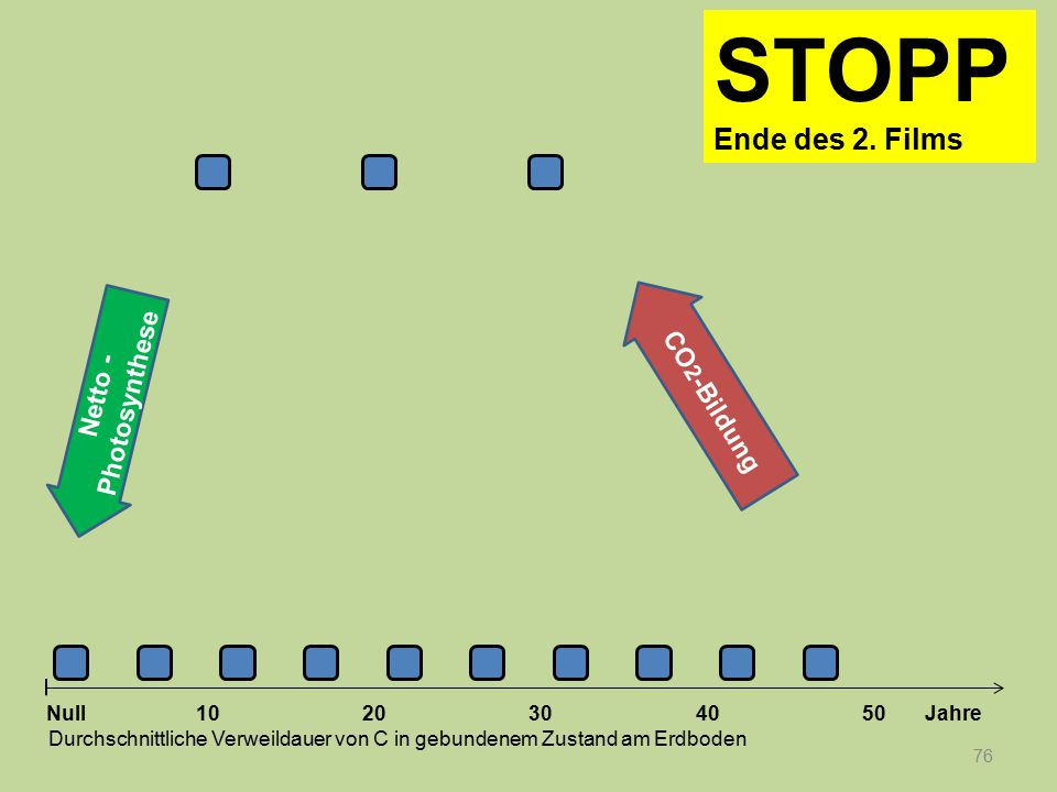 STOPP Ende des 2. Films CO2-Bildung Netto -Photosynthese Null 10 20 30