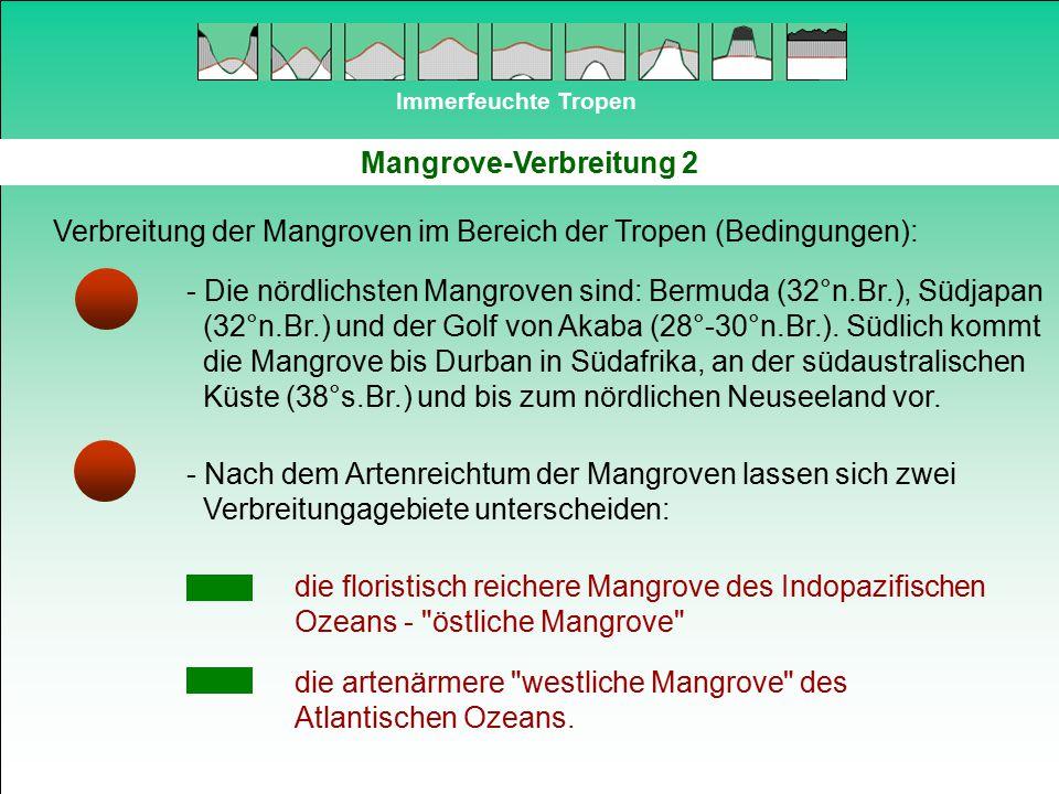 Mangrove-Verbreitung 2