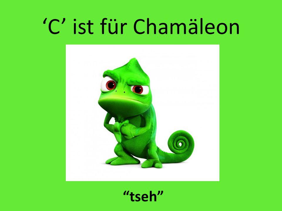 'C' ist für Chamäleon tseh