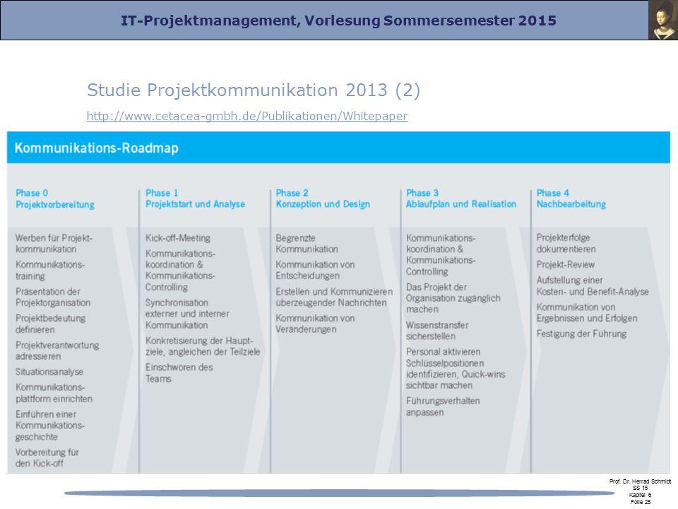 Studie Projektkommunikation 2013 (2)