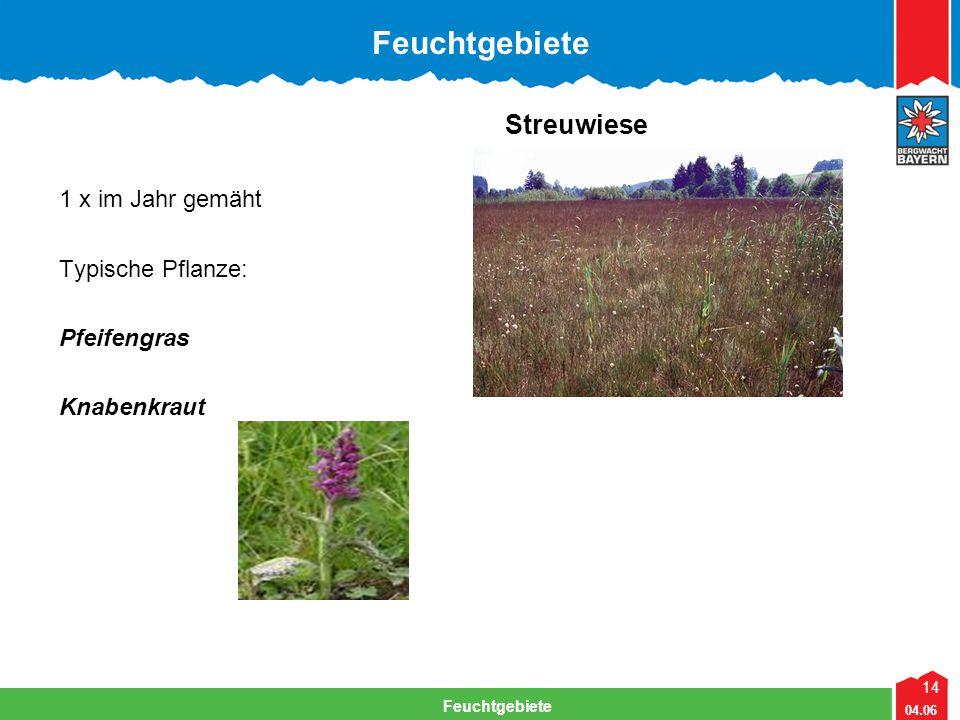 Feuchtgebiete Streuwiese 1 x im Jahr gemäht Typische Pflanze: