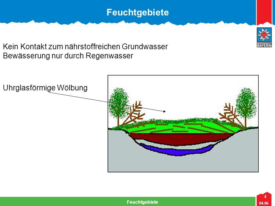 Feuchtgebiete Kein Kontakt zum nährstoffreichen Grundwasser