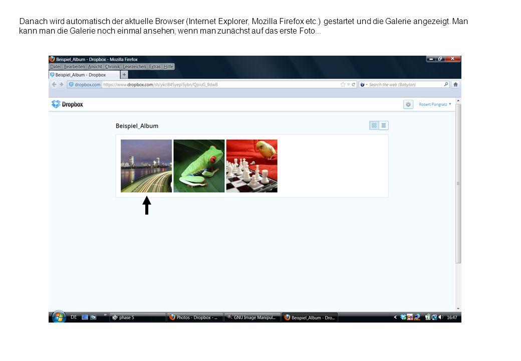 Danach wird automatisch der aktuelle Browser (Internet Explorer, Mozilla Firefox etc.) gestartet und die Galerie angezeigt. Man